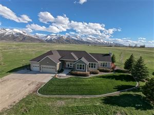 Photo of 2052 Hog Tommy Rd, Lamoille, NV 89828 (MLS # 3617158)