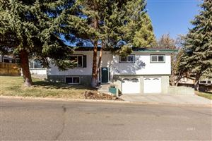 Photo of 1239 Mountain View Dr, Elko, NV 89801 (MLS # 3618173)