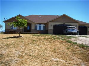 Photo of 628 Thistle Dr. Dr, Spring Creek, NV 89815 (MLS # 3616858)
