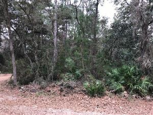Photo of XX Osprey Lane, Santa Rosa Beach, FL 32459 (MLS # 816408)