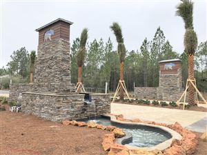 Photo of 151 Hibernate Way, Freeport, FL 32439 (MLS # 816428)