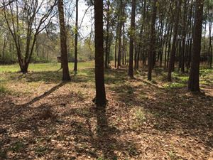 Photo of 2 Acres Antioch Road, Crestview, FL 32536 (MLS # 816480)