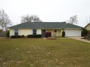 Photo of 809 Cloverview Drive, Crestview, FL 32536 (MLS # 803603)