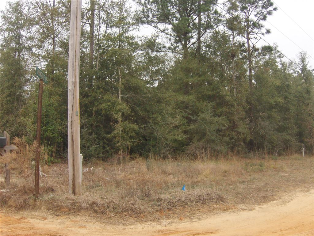 Photo for 2.26 ACRES Walthal Road, Crestview, FL 32539 (MLS # 815854)