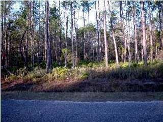 Photo of LOT 51 Mallet Bayou Road, Freeport, FL 32439 (MLS # 850903)