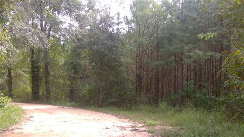 Photo of 15 acres S Jack Rd, Laurel Hill, FL 32567 (MLS # 855959)