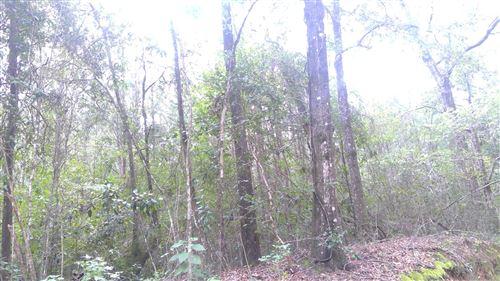 Photo of 40 acres S Jack Rd, Laurel Hill, FL 32567 (MLS # 855966)