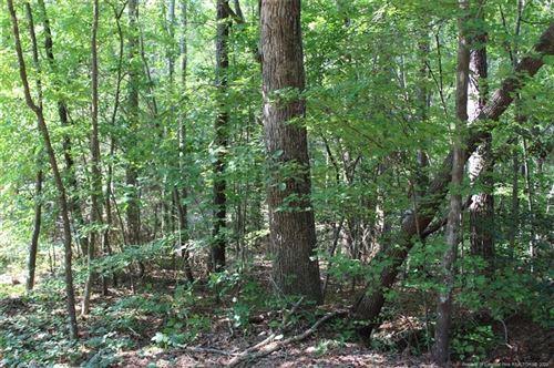 Photo of 999 N Windrace Trail, Sanford, NC 27332 (MLS # 637046)