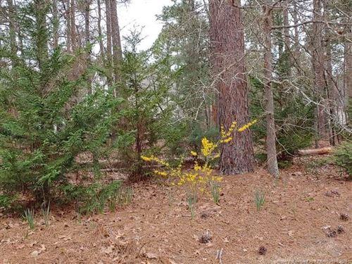 Photo of 740 Blue Bird Drive, Vass, NC 28394 (MLS # 653083)
