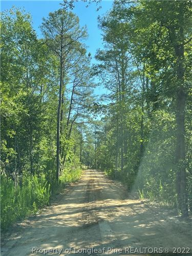 Photo of Pinewood Road, Sanford, NC 27332 (MLS # 670144)