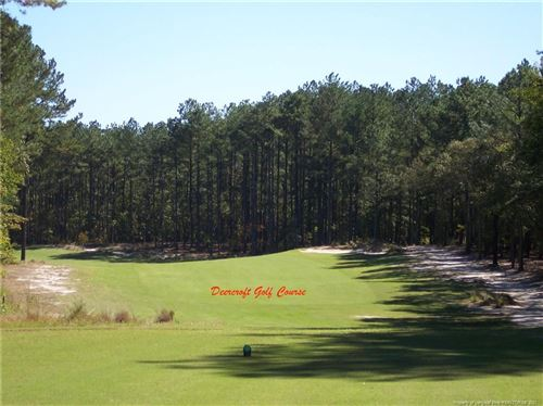 Photo of #8 Peach Orchard Road, Wagram, NC 28396 (MLS # 645298)