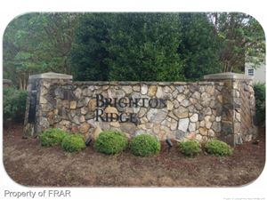 Photo of Pebble Creek Dr, ANGIER, NC 27501 (MLS # 551331)