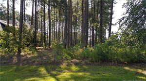 Photo of 36 Micahs (457) Way N, Spring Lake, NC 28390 (MLS # 608337)