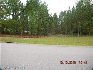 Photo of 533 FOXLAIR DRIVE, FAYETTEVILLE, NC 28311 (MLS # 550340)