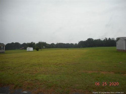 Photo of 66 Tyler Godwin Road, Erwin, NC 28339 (MLS # 637376)