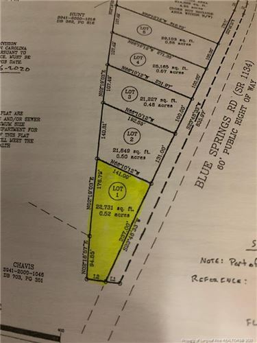 Photo of 2046 Blue Springs Road, Red Springs, NC 28377 (MLS # 629428)