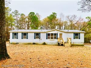 Photo of 668 Milton Welch Road, Sanford, NC 27332 (MLS # 555486)