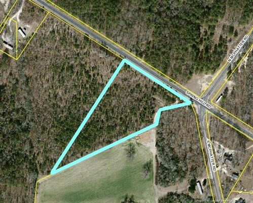 Photo of SPRING HILL Road, Red Springs, NC 28377 (MLS # 624684)