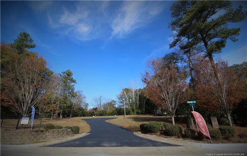Photo of 105 Arbor View Court, Fayetteville, NC 28303 (MLS # 644845)