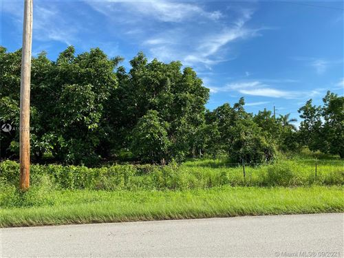 Photo of 20290 SW 256 street, Homestead, FL 33031 (MLS # A11092787)