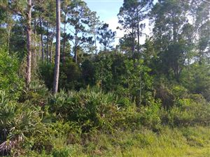 Photo of Lot R-463 150th, Jupiter, FL 33478 (MLS # RX-10547114)