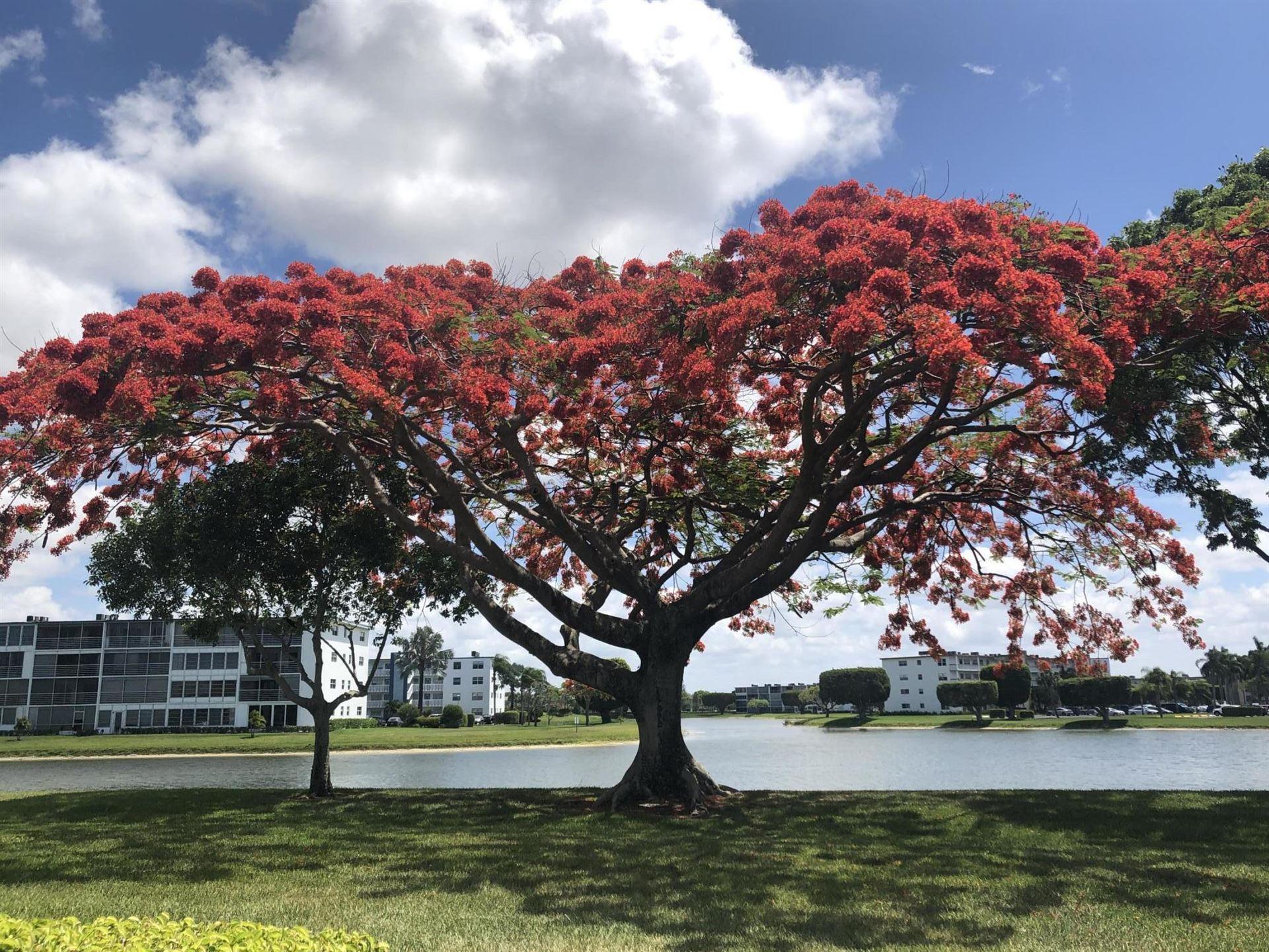 3028 Rexford B #3028, Boca Raton, FL 33434 - #: RX-10719204