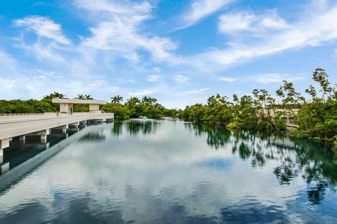 Photo of 4600 N Ocean Drive #503, Singer Island, FL 33404 (MLS # RX-10555296)