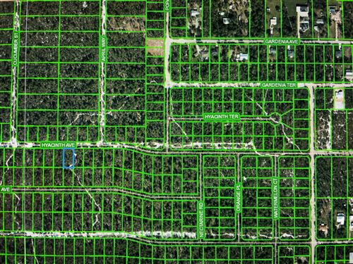 Photo of 1417 Hyacinth Avenue, Sebring, FL 33875 (MLS # RX-10674353)