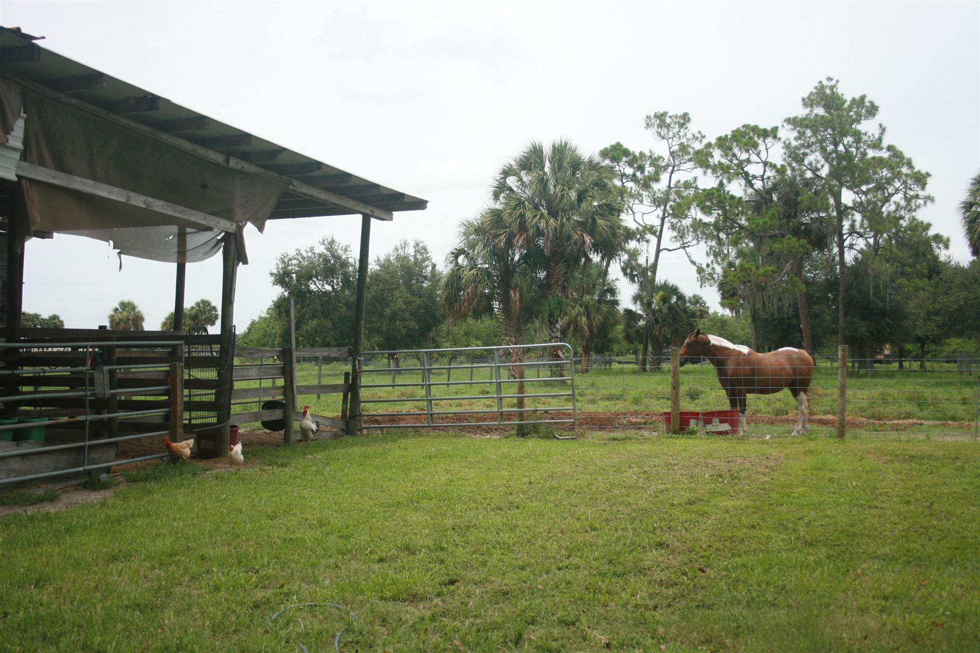 Photo of 8202 SW Tommy Clements Lane, Indiantown, FL 34956 (MLS # RX-10729488)