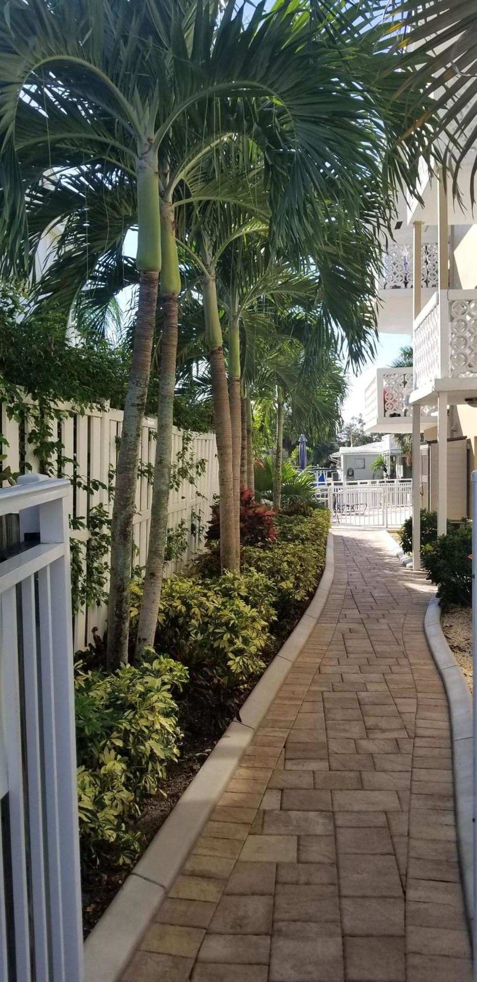 Photo of 3220 Bayview Drive #304, Fort Lauderdale, FL 33306 (MLS # RX-10579539)