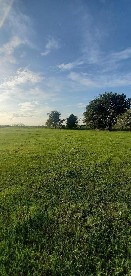 Photo of 0 SW Fox Brown Road, Indiantown, FL 34956 (MLS # RX-10726589)