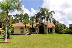 Photo of 9425 Sandy Run, Jupiter, FL 33478 (MLS # RX-10546776)