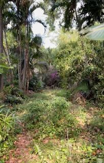 Photo of 1208 West Court, Mangonia Park, FL 33407 (MLS # RX-10719843)