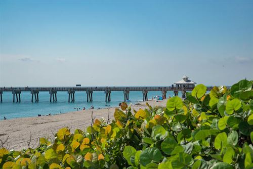Tiny photo for 450 N Juno Lane, Juno Beach, FL 33408 (MLS # RX-10706932)