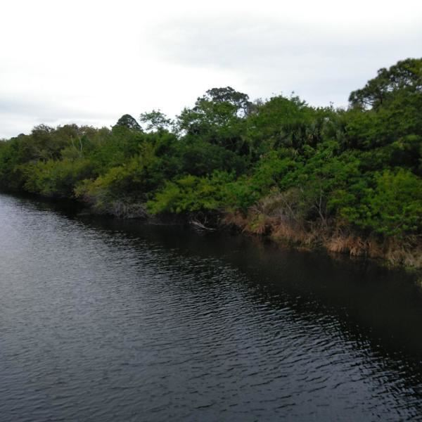 Photo of Tbd Bryant Road, Fort Pierce, FL 34946 (MLS # RX-10629947)