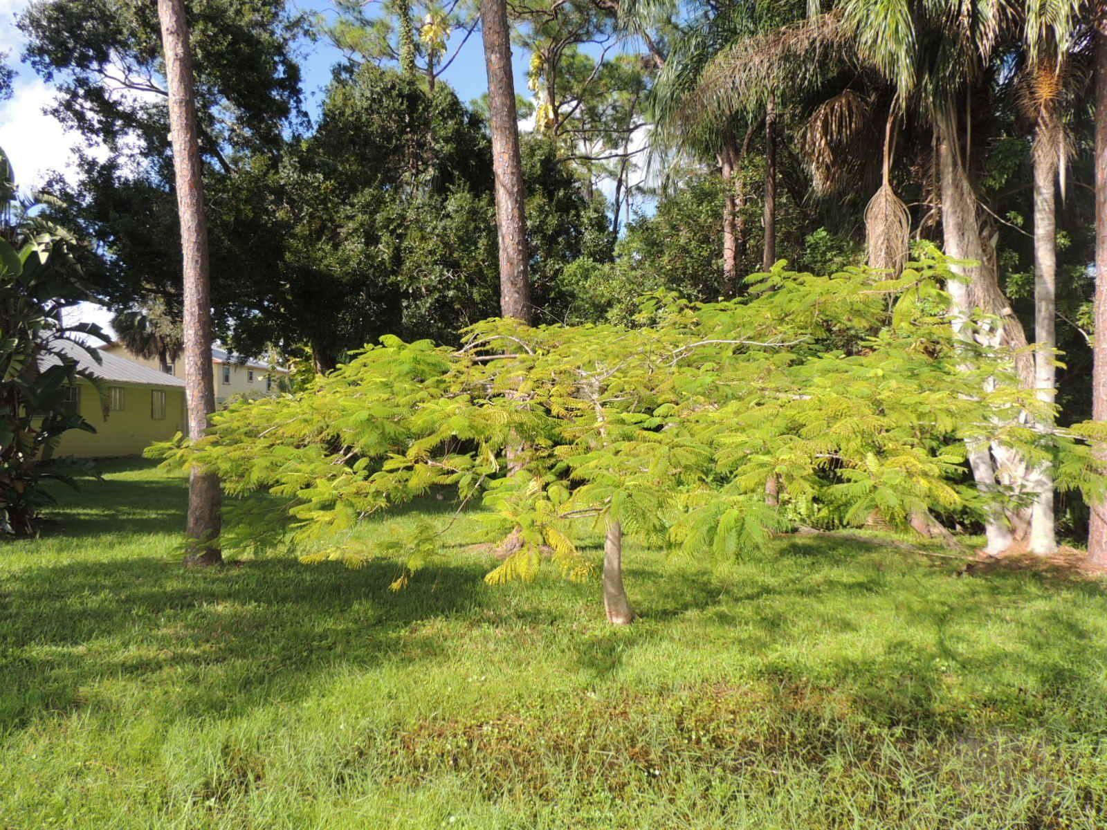 Photo of 00 SW 29th Street, Palm City, FL 34990 (MLS # RX-10666961)