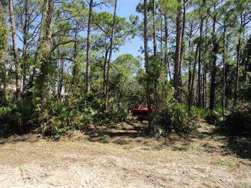 Photo of 924 W PINE AVE, Saint George Island, FL 32328 (MLS # 307043)