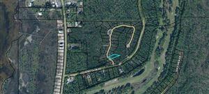 Photo of 42 SHALLOW REED DR, Port Saint Joe, FL 32456 (MLS # 303044)