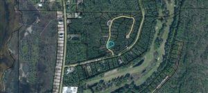 Photo of 41 SHALLOW REED DR, Port Saint Joe, FL 32456 (MLS # 303045)