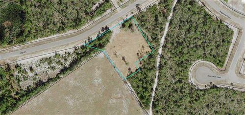 Photo of 258 SAGO DR, Eastpoint, FL 32328 (MLS # 306078)