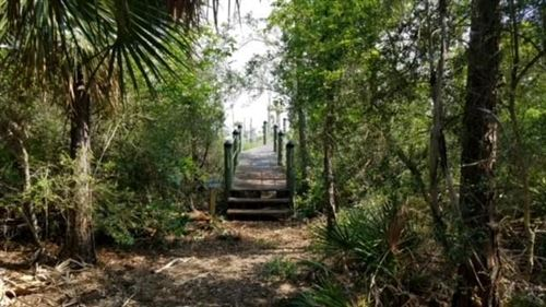 Photo of 2205 LEISURE LN, Saint George Island, FL 32328 (MLS # 307129)