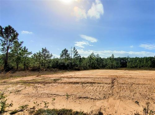 Photo of 373 JONES HOMESTEAD RD, Port Saint Joe, FL 32456 (MLS # 304136)