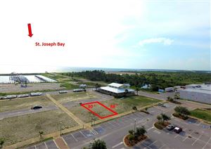 Photo of Lot 19 VILLAGE DR, Port Saint Joe, FL 32456 (MLS # 302152)
