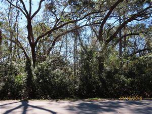 Photo of 480 BLUFF RD, Apalachicola, FL 32320 (MLS # 300221)
