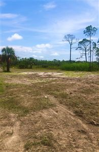 Photo of 174 BEACH ST, Port Saint Joe, FL 32456 (MLS # 302232)