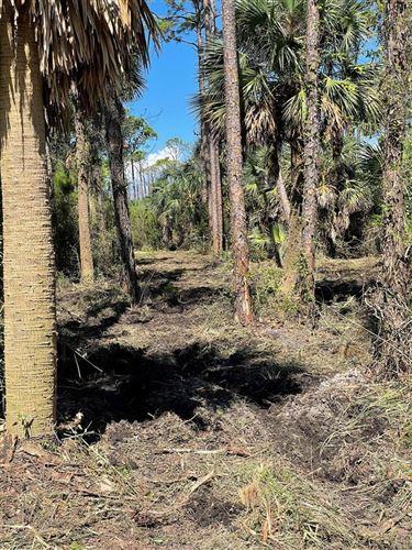 Photo of 697 E PINE AVE, Saint George Island, FL 32328 (MLS # 309247)