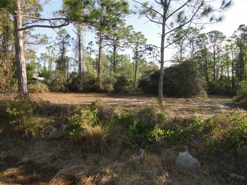 Photo of 331 NEDLEY ST, Saint George Island, FL 32328 (MLS # 307266)