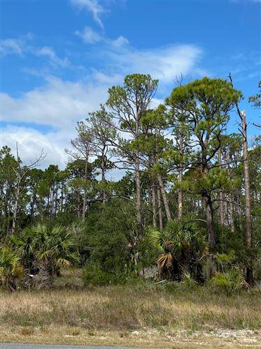 Photo of 11 CR 30-A, Port Saint Joe, FL 32456 (MLS # 306274)