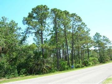 Photo of 0 CR 30-A #LOT 5, Port Saint Joe, FL 32456 (MLS # 306318)