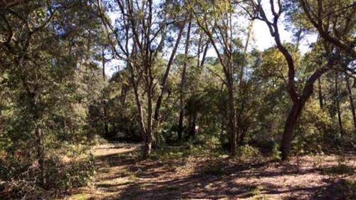 Photo of 111 SCIPIO LANDING RD, Apalachicola, FL 32320 (MLS # 303328)